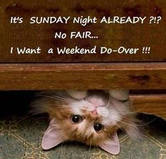 Weekends Over Quotes. ...