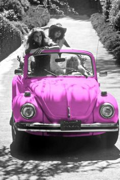 pink bug plus a convertible