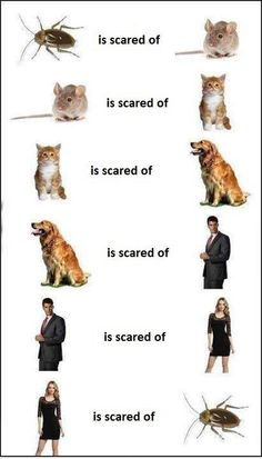 The awkward fact of life #fact   #factoflife   #awkward   #awkwardmoment   #memes   #LOL