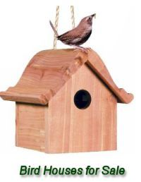 Many bird houses for sale are available for those who don't want to build their own.
