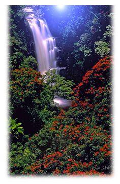 Moonlight casts a heavenly glow on a mystical Hawaiian waterfall