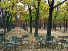 Google Image Result for http://imgc.artprintimages.com/images/art-print/stephen-sharnoff-trees-and-empty-chairs-in-autumn-in-the-luxembourg-gardens-paris_i-G-38-3870-3S9JF00Z.jpg