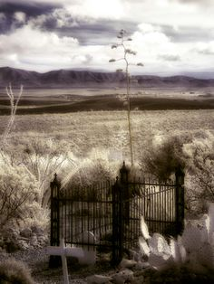 Boot Hill Cemetery in Tombstone AZ. By Ericka VanHorn