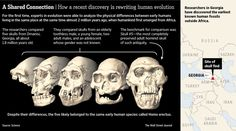 Skull #5 and the Rewriting of Human Evolution by Robert Lee Hotz, wsj: The discovery of a 1.8 million-year-old skull has offered evidence that humanity's early ancestors emerged from Africa as a single adventurous species, not several species as believed, drastically simplifying the story of human evolution... http://www.sciencemag.org/content/342/6156/297.summary #Science #Human_Evolution