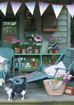 Pretty aqua colored garden house with a porch, beautiful flower pots, a happy bunting and a sweet cat :)