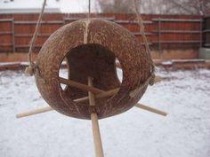 Coconut birdfeeder