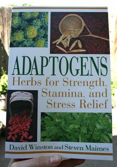 stamina, herbs, deliciousobsessionscom, natur, adaptogen, stress relief, health, book reviews, new books