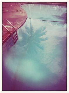 Reminds me of summers at the Nelson's on DeWolf. palm, old school photography, swimming pools, reflection photography, pool water, photographi