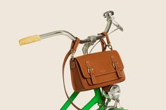 love this idea for carrying about your purse while out and about on your schwinn! lol