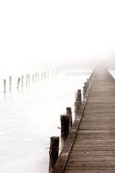 ♥ fog