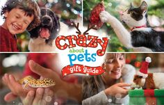 Crazy fun gift ideas for your pets. Which is your pet's must-have?