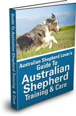 Ultimate Guide to Australian Shepherd Training & Care  ASTROS PIC IS IN THIS BOOK    My Wyatt's mug is in the trsining guide!