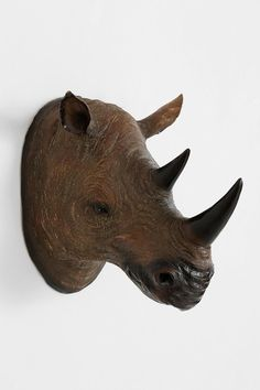 Rhino Head Wall Sculpture #urbanoutfitters