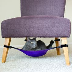 Cat Crib Purple now featured on Fab.