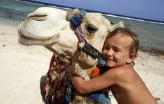 Hurghada favorit place, famili holiday, boutiqu famili, camels, adventure travel, families, adventur travel, egypt, bucket lists