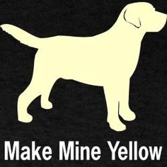 <3 Yellow Labs <3
