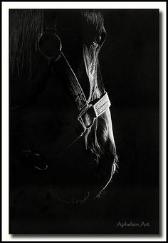 The Patriarch - Scratchboard by Aphelion Art, via Flickr