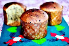 Pasta Madre Chocolate Panettone For The Daring Bakers. Traditional Recipe From The Simili Sisters