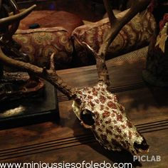 Decorated deer skull