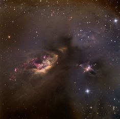 """Celestial Impasto: Sh2–239"" by Adam Block (USA). A dusty star-forming region in Taurus. The pink filaments show where emission from hot young stars excites hydrogen gas. And it really could be an expressionist painting. Mona Evans, ""Astronomy Photographer of the Year 2013"" http://www.bellaonline.com/articles/art181754.asp"