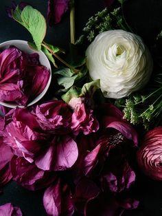 Deep Jewelled Brushstokes language of flowers, flower field, botanical prints, art photography, purple flowers, wedding colors, beauti, fresh flowers, floral arrangements