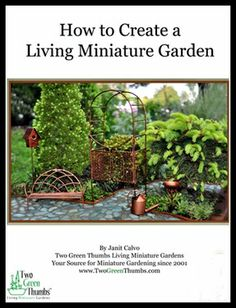 Miniature Fairy Gardens Illustrated How-to Guide