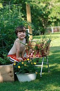 5 Reasons Why Kids Should Garden. (photo-faith buss)   seasonalwisdom.com