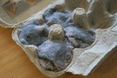 Dryer Lint Fire Starters:  I always save all my dryer lint for when we have fires in the back yard.  Dryer lint is faboo alone for beginning a fire, but this is a neat way to bring it with you for when you go camping.  My grandma used to do this for us...