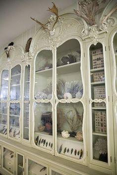 Cabinet of Curiosities of Bonnier de la Mosson