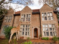 hotel located between Nairobi and the Ngong Hills Nature Reserve