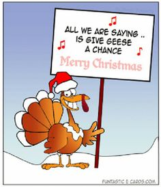Give #geese a chance #christmasfood #funny #letterstosanta http://www.fatherchristmasletters.co.uk/letter-from-santa.asp