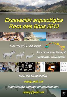 Campaña de excavación en el yacimiento de la Roca dels Bous (Sant Llorenç de Montgai, La Noguera, Lleida), del 22 de marzo al 7 de abril y del 16 al 30 de junio de 2013 :: audio ::