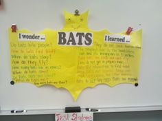 I wonder... I learned chart of facts about bats. Fun in First Grade: Bats