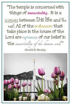 LDS Temple Quotes    #LDSQuotes #MormonLink.com