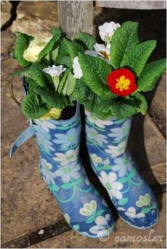 Love recycling and love pottering in the garden - bringing the two together and you have the upcycled container garden! A lovely guest post by the fabulous Thinly Spread making planters from wellies and pots from colanders. Fantastic. We are set for Spring!  (AND teach the kids about recycling AND gardening at the same time!!)