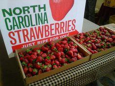 North Carolina #ridecolorfully