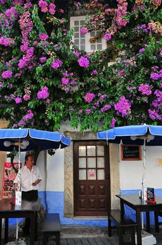 Café in Obidos, Portugal #PortugalFlowerPower obidos portugal