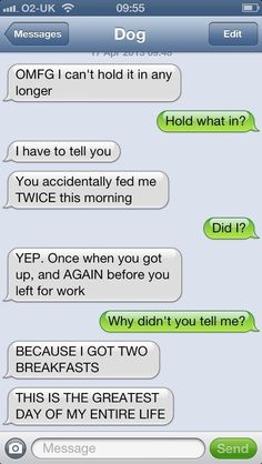 a dog's text......I enjoy these so much funni stuff, anim, laugh, dogs, giggl, breakfast, hilari, dog texts, thing