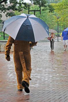 Nittany Lion Mascot | Penn State University