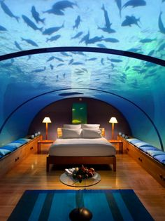 underwater hotel sea life, underwat hotel