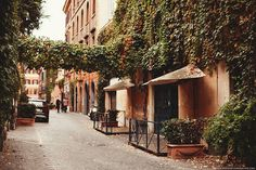 November in Rome by Paris in Four Months