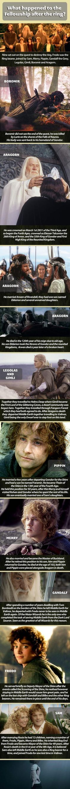 What happened to The Fellowship after the ring…