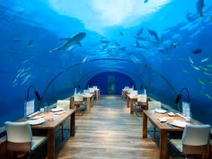 These seven incredible spots offer the unreal experience of dining and drinking underwater—no scuba gear necessary