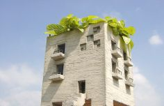 This is not actually an abandoned building with overgrown plants