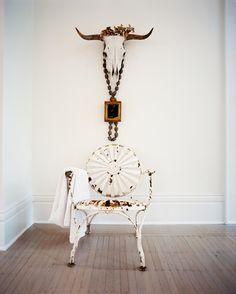 Hallway Photo - A white metal patio chair below a cow skull