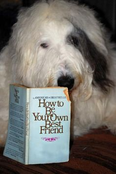 Bogart reads How to Be Your Own Best Friend.