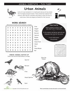Worksheets: Animal Habitats: Urban worksheet