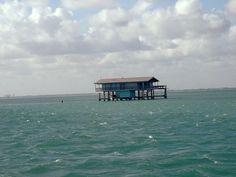 Image detail for -november 11 2003 : biscayne bay, florida, usa