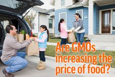 Are GMOs increasing the price of food?
