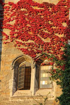 Law Quadrangle at the University of Michigan in Ann Arbor, Michigan